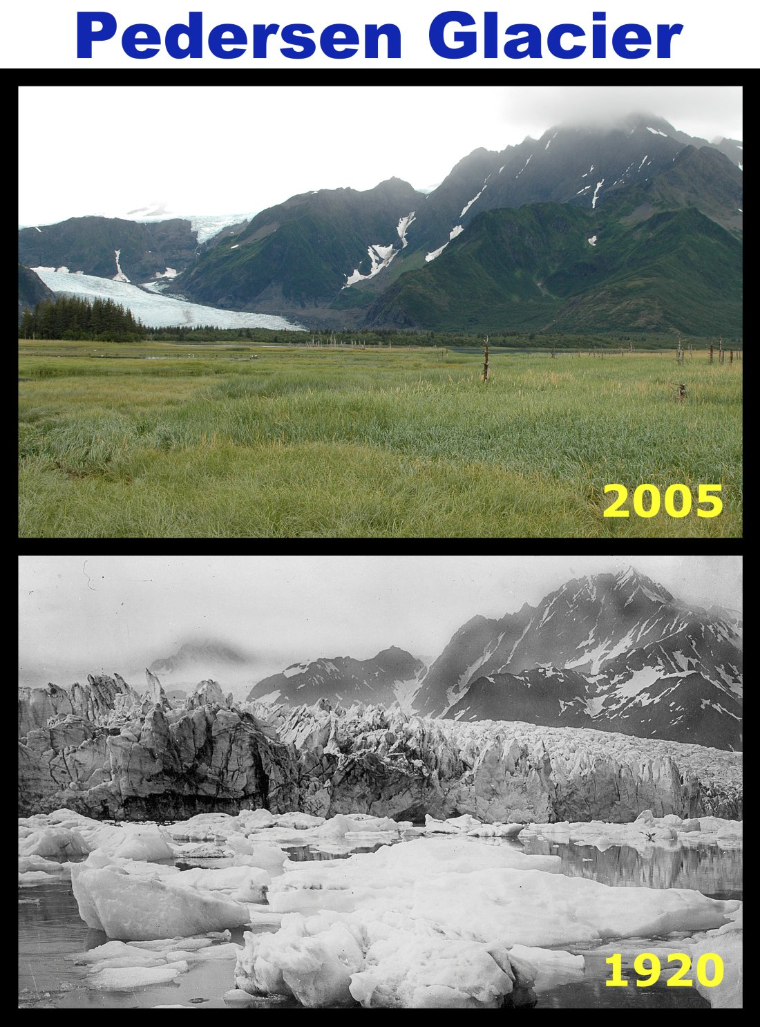 Comparison of Pedersen Glacier from 1920 to 2005