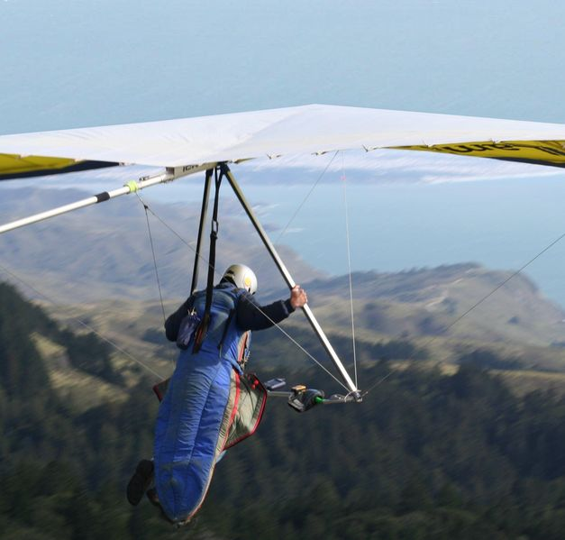 Gliders use thermals to gain altitude