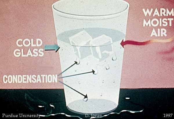 Warm air interacting with the cold air from the glass of ice water forms condensation
