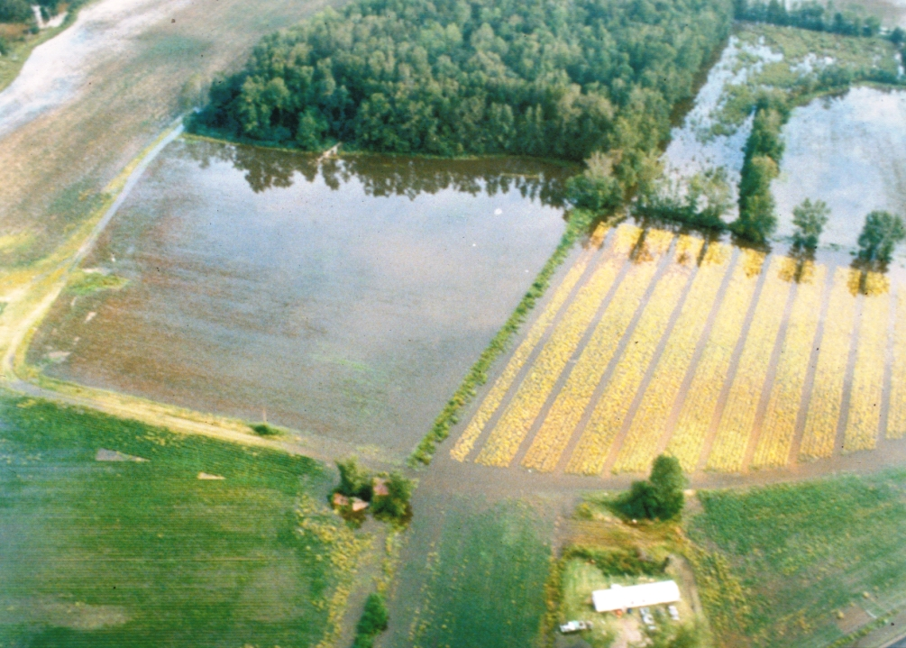 Cropland Flooding