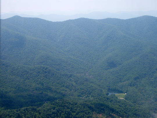 Forested Watershed