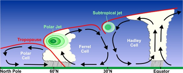 A cross section of global air circulation in the northern hemisphere. The subtropical jet is at 30°N and the polar jet is at 60°N.