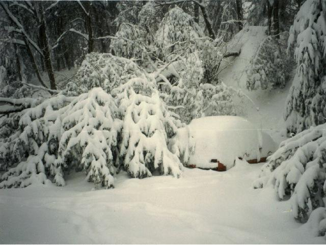 March 1993 Blizzard
