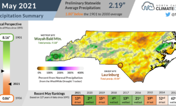 The May 2021 precipitation summary infographic, highlighting the monthly average temperature, departure from normal, and comparison to historical and recent years