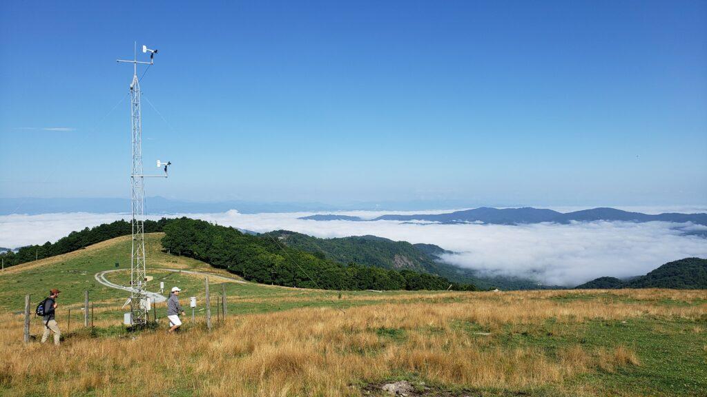 Valley fog at Bear Wallow Mountain (July 2021)